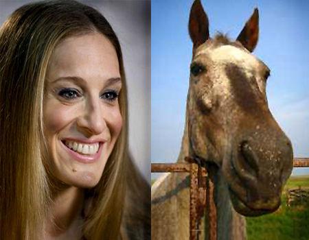 Quelle est la différence entre Sarah Jessica Parker et un cheval ?