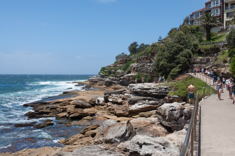 sydney-bondi-beach-coastal-walk