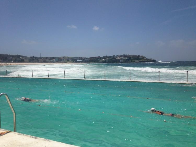 sydney-bondi-icebergs-piscine-6
