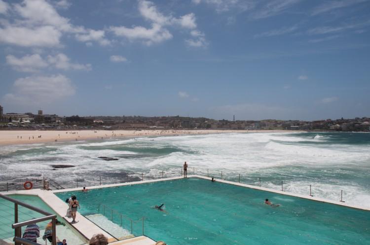 bondi-icebergs-club-coastal-walk-sydney