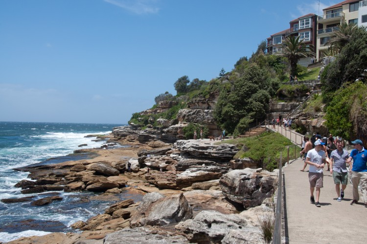 coastal-walk-bondi-coogee-1