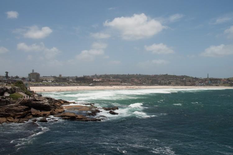 coastal-walk-bondi-coogee-2