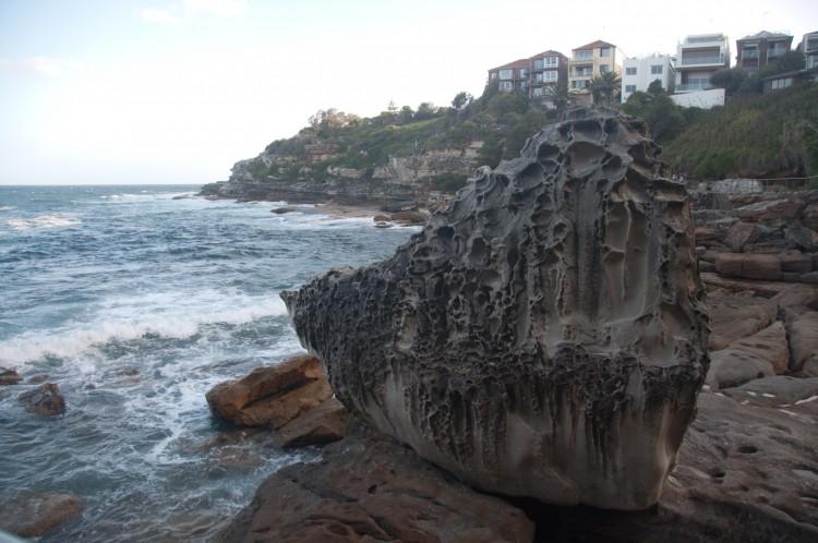 coastal-walk-bondi-coogee-5