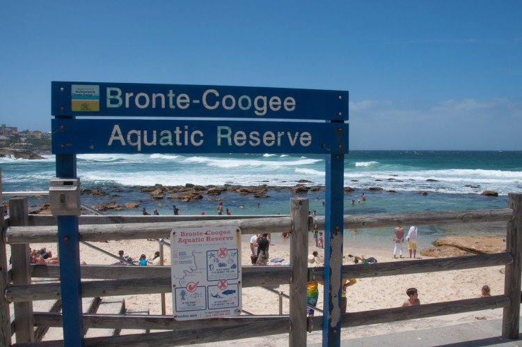 coastal-walk-bronte-beach-7