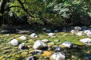 Australie : Cairns, Mossman Gorge et Port Douglas