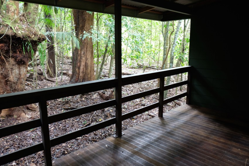 australie-queensland-atherton-tablelands-chambers-wildlife-rainforest-lodges