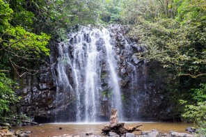 Australie : les Atherton Tablelands