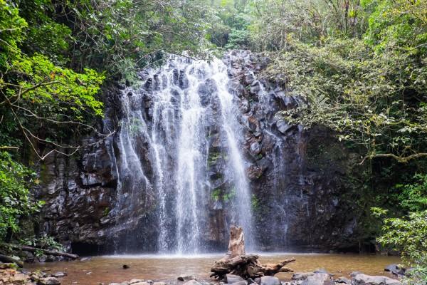 australie-queensland-atherton-tablelands-ellinjaa-falls