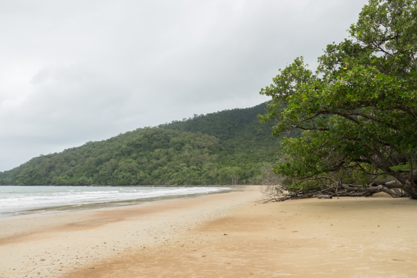 australie-queensland-daintree-cow-bay-1