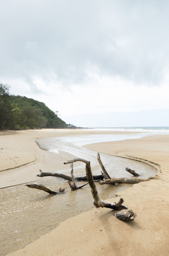 australie-queensland-daintree-cow-bay-7
