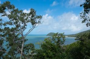Australie : la forêt tropicale de Daintree