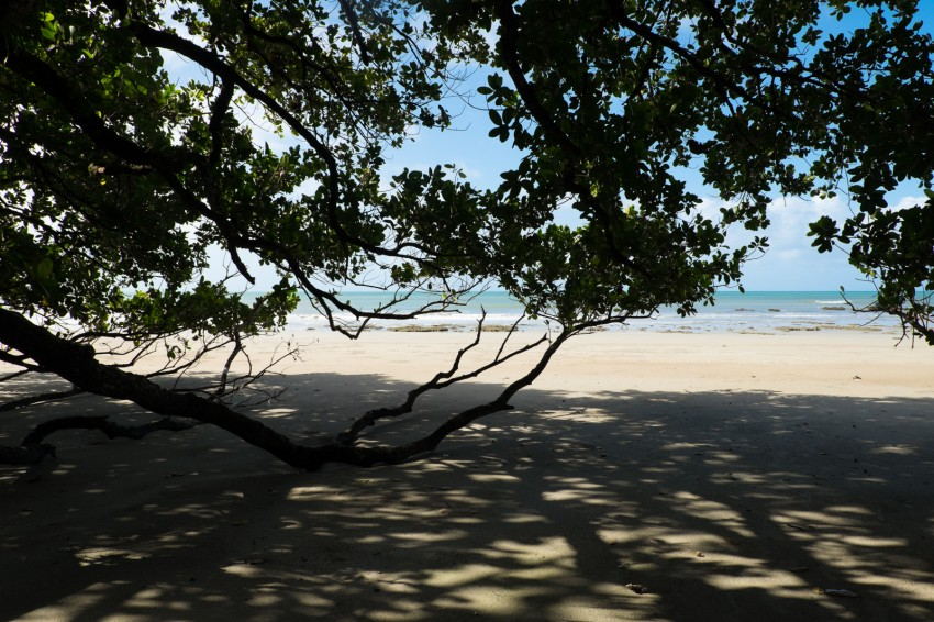 australie-queensland-daintree-kulki-beach-3