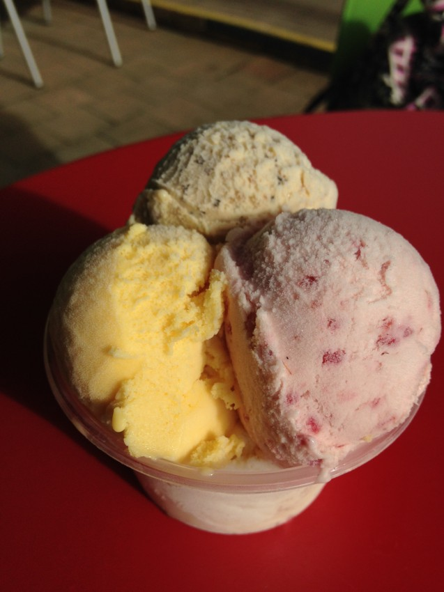 australie-queensland-daintree-rainforest-ice-cream-company-2