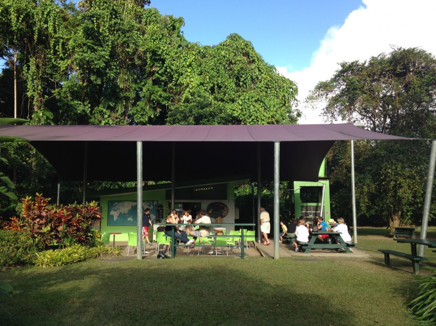 australie-queensland-daintree-rainforest-ice-cream-company-8