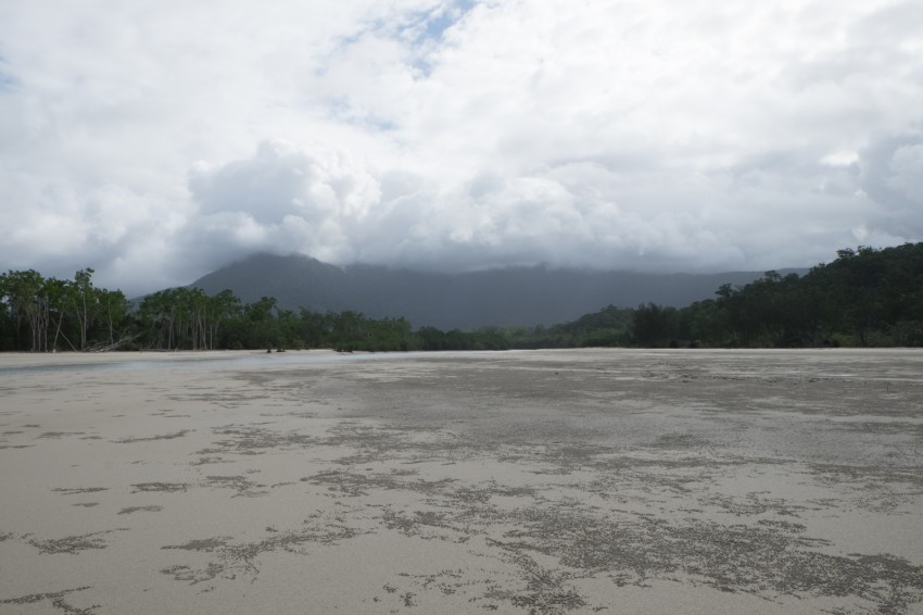 australie-queensland-daintree-rainforest-thornton-beach-13