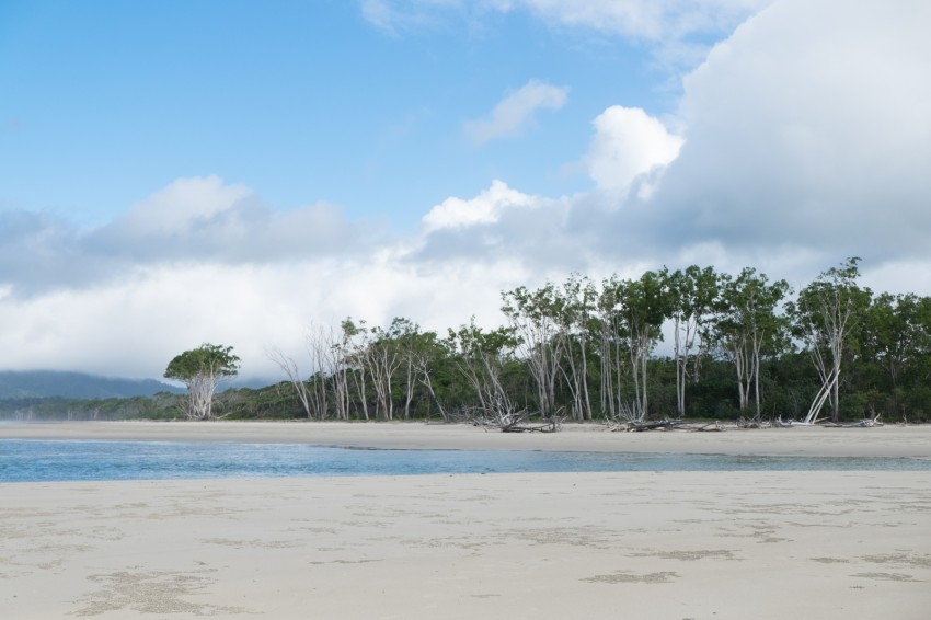 australie-queensland-daintree-rainforest-thornton-beach-15