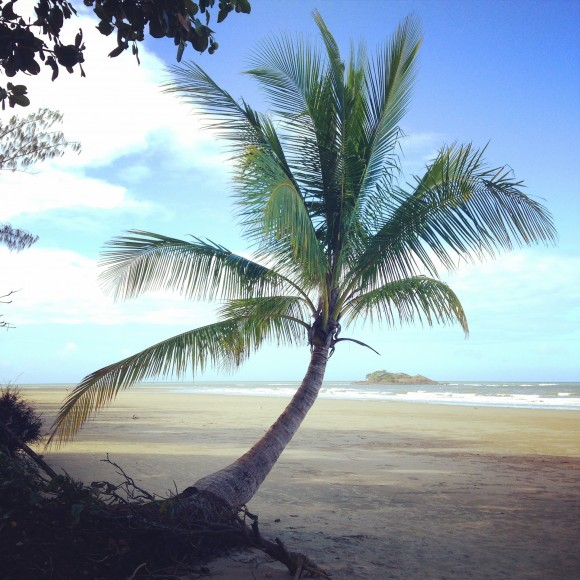 australie-queensland-daintree-rainforest-thornton-beach-18