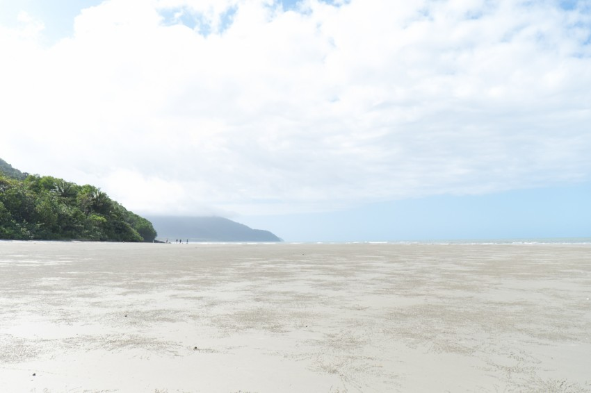 australie-queensland-daintree-rainforest-thornton-beach-8