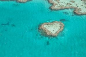 Australie : Whitsundays – La Grande Barrière de Corail