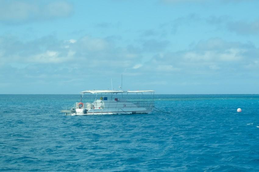 australie-queensland-grande barriere-corail-snorkeling