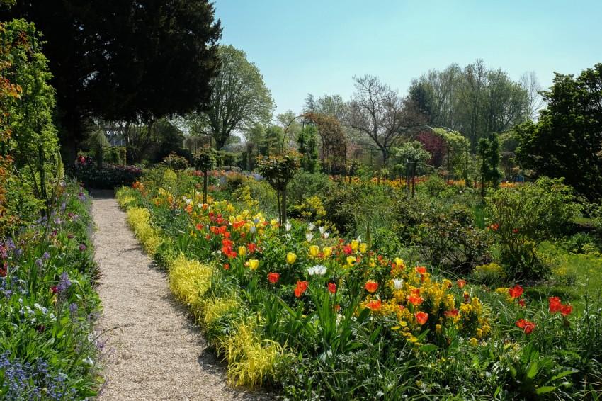 giverny-jardin-monet-fleurs