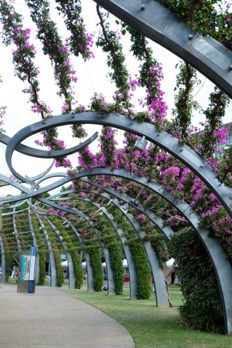 australie-brisbane-south-bank-parklands-arbour