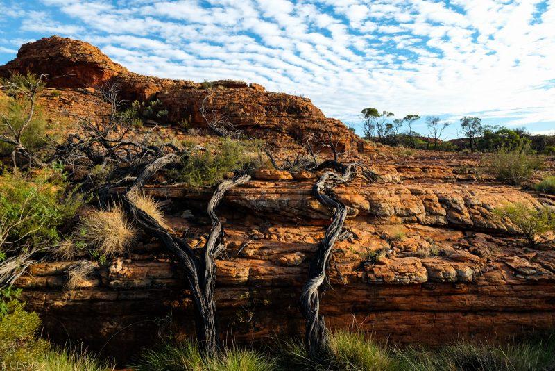 australie-kings-canyon