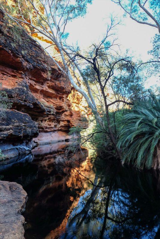 australie-kings-canyon_jardin-eden