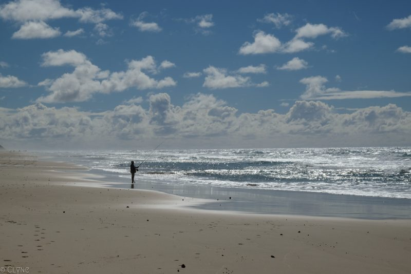 australie-fraser-island-75-miles-beach