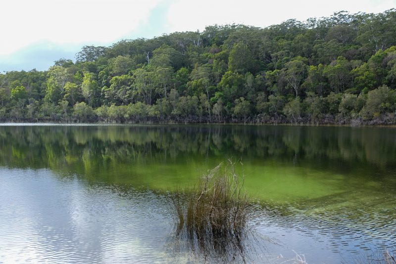 australie-fraser-island-lake-basin