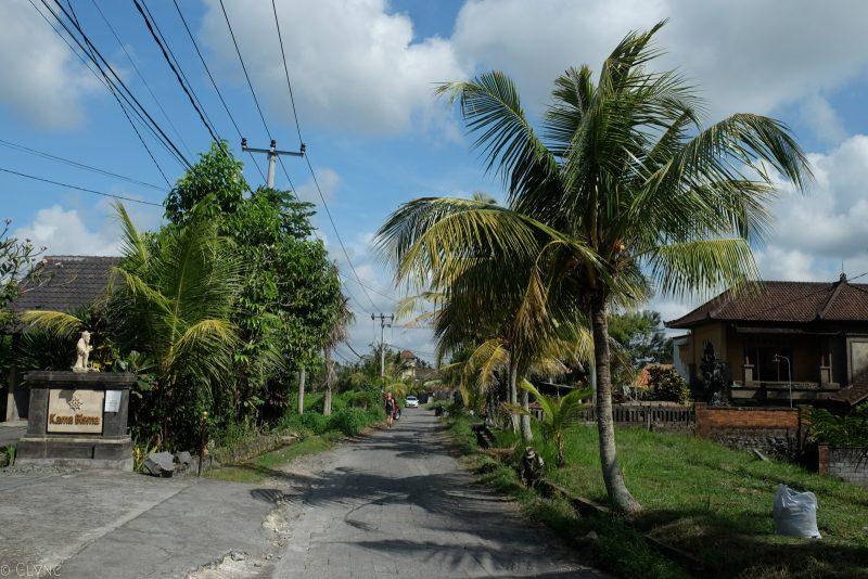 bali-ubud-street
