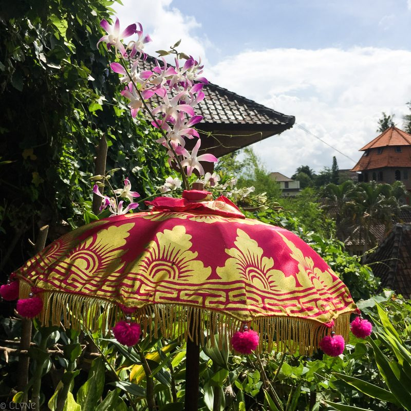 bali-ubud-yellow-flower-cafe