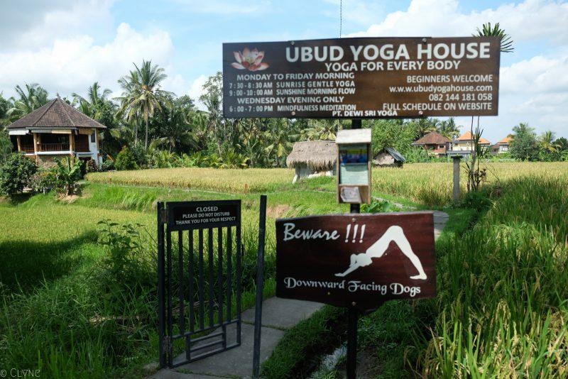 bali-ubud-yoga house