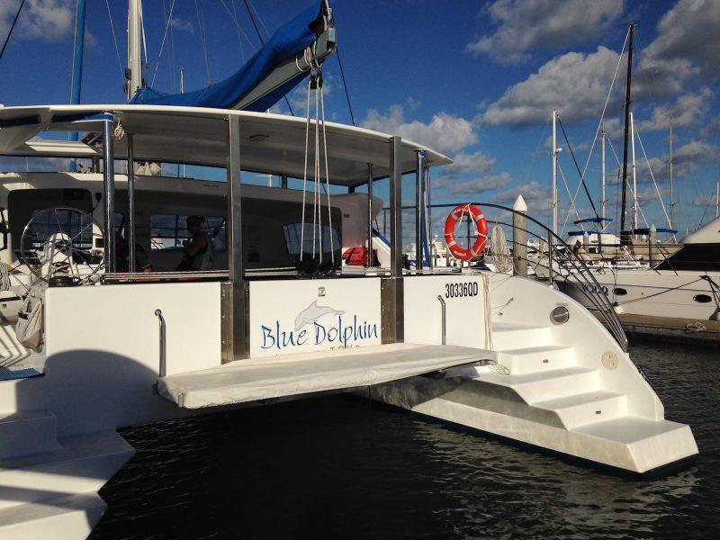 australie-queensland-baleines-blue-dolphin
